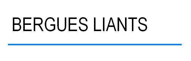 logo Bergues Liants
